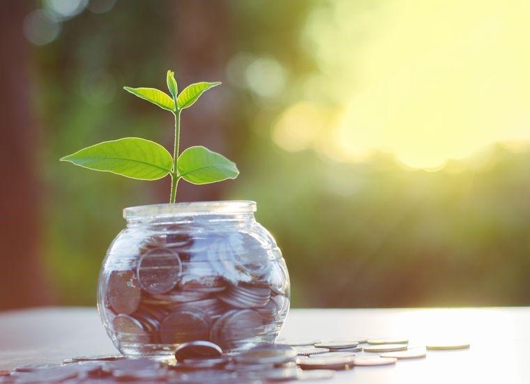 Накопительное страхование жизни: страховка или долгосрочное инвестирование?