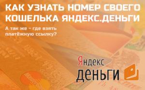 Номер кошелька Яндекс. Денег, для чего нужен, где можно посмотреть
