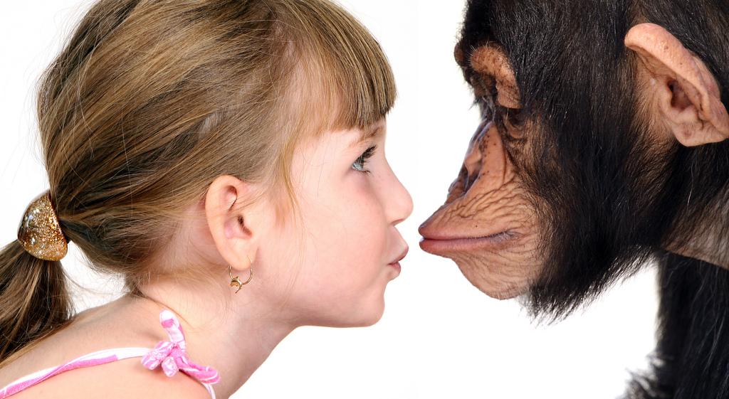 Люди мутируют в три раза медленнее шимпанзе. О чем это говорит?