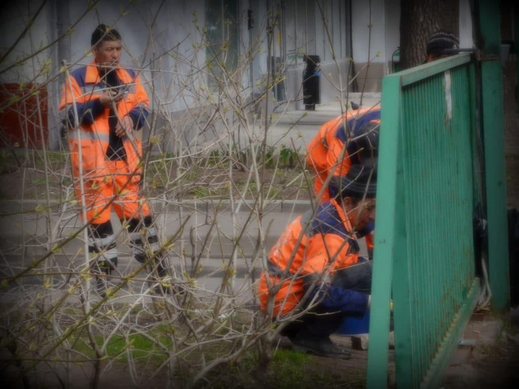 В Россию из Узбекистана приехало трудовых мигрантов в 5 раз больше, чем из Украины