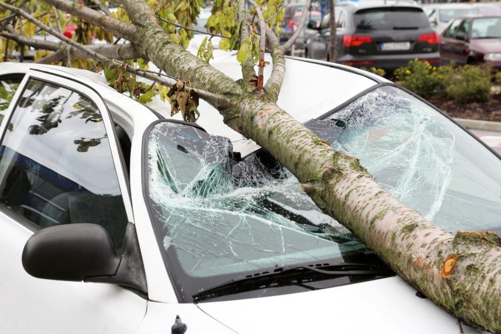 Ямы на дороге, упавшее дерево или снег с крыши: как заставить коммунальщиков возместить ущерб автомобилю?