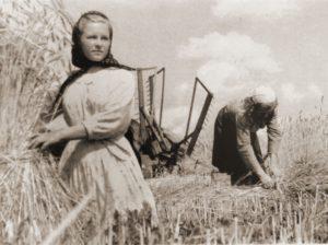 Какие были налоги с населения, предприятий и колхозов в СССР?