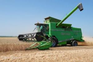 Зерновая биржа: панацея или фикция? В России всё чаще раздаются голоса в пользу централизации торговли зерном